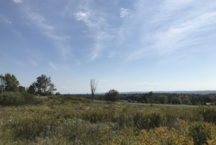hunting land for sale in florence ny sunset views from land and camps