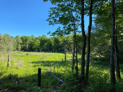 NY land for sale in Orwell NY state