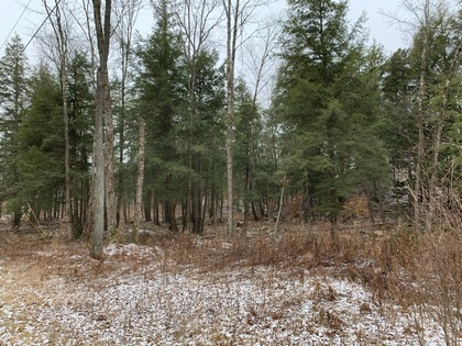 Adirondack NY land for sale in Diana NY