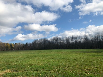 NY land for sale in Pharsalia NY