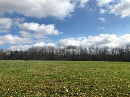NY hunting land for sale