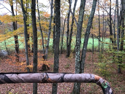 NY hunting land for sale in the Southern Tier