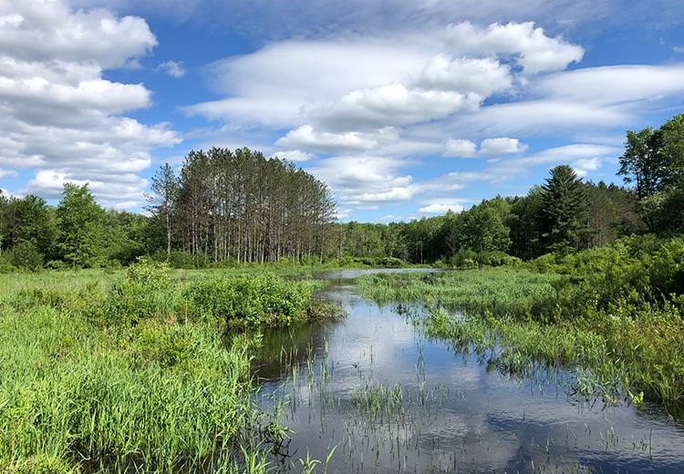 Waterfront Land For Sale Oneida County Ny Pond From Land And Camps